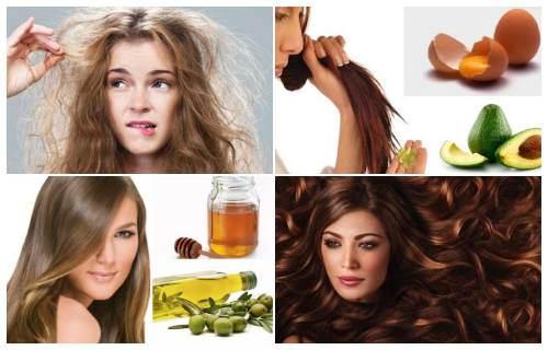 remedios caseros para el cabello seco y maltratado