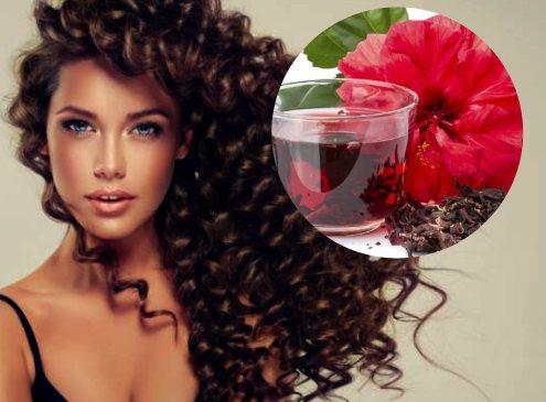 propiedades del hibisco para el cabello