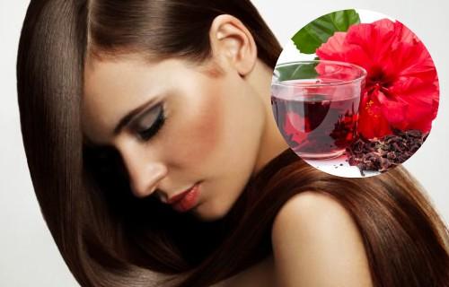 beneficios de la flor de jamaica en el cabello