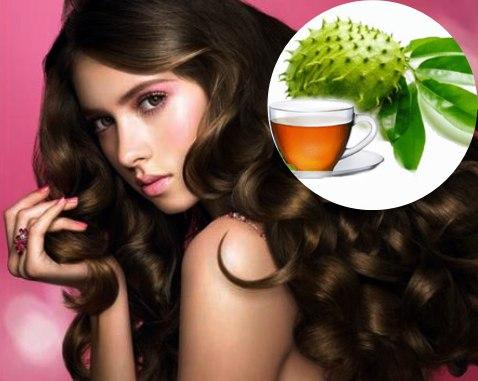 propiedades de las hojas de guanabana para el cabello