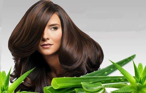 sábila para la caída del cabello