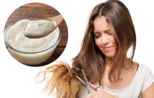 como usar el yougurt para el cabello dañado