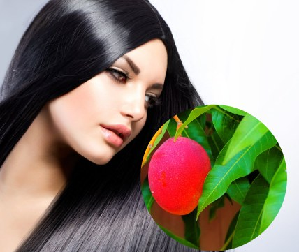 como usar las hojas de mango para el pelo