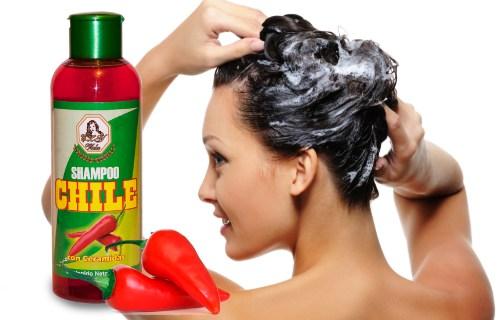 shampoo de chile marcas