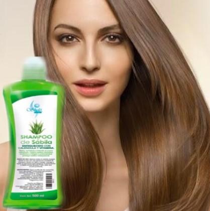 como hacer shampoo de sábila