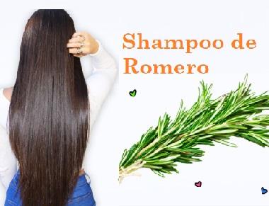 propiedades del shampoo de romero